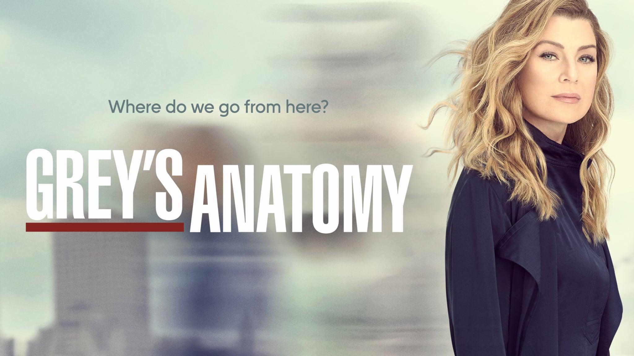 Grey's Anatomy Season 17 Episode 12
